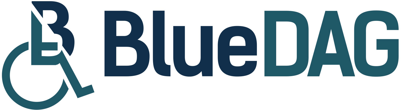 BlueDAG Software Solutions